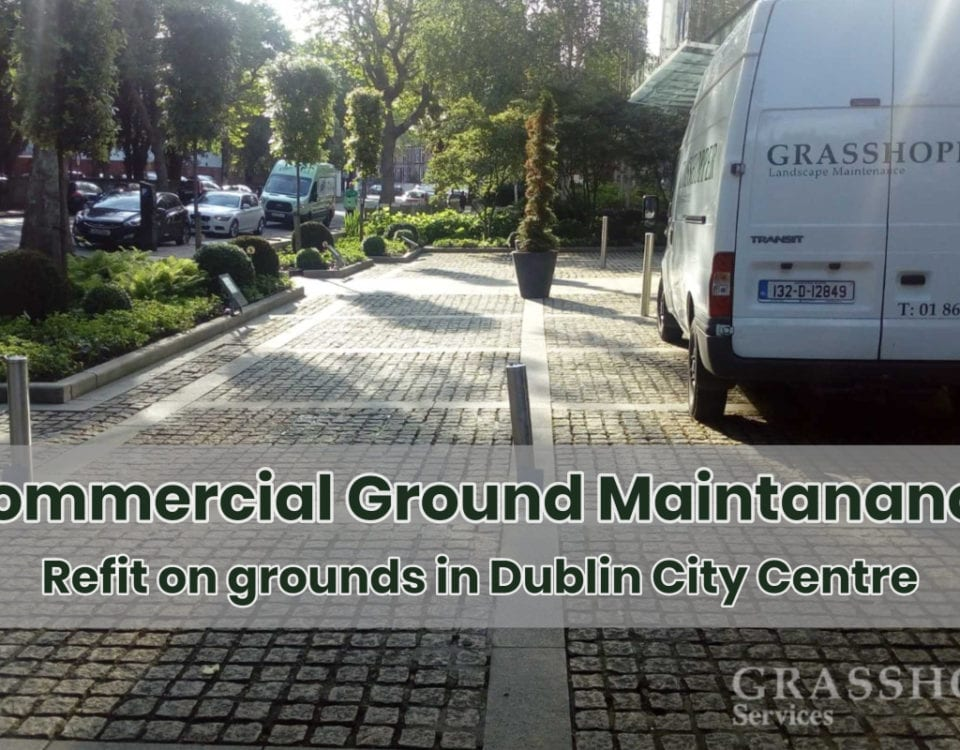 """Commercial Ground Maintenance"""
